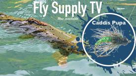Caddis Pupa - Fly Supply TV