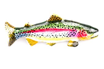 Rainbow Trout XL Hand Painted Pin
