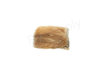 Natural fur on skin muskrat