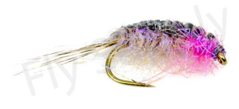Irresistible Scud - Fly Supply TV