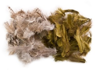 Partridge hackle dyed