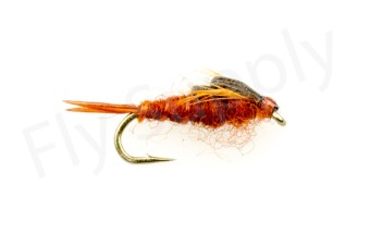 Early Brown Stone Fly Heavy #14