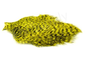 Whiting Spey Hackle Hen Cape