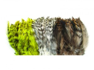 Barred Neck Hackle Feathers