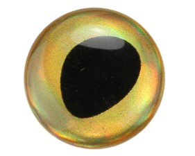 3D Epoxy Fish Eyes Rainbow Gold