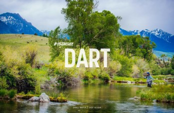 Sage Dart 3pc Fly Rod