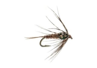 Umpqua Soft Hackle Pheasant Tail Tungsten #14